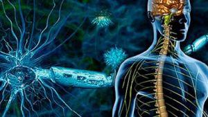 MS (Multiple Skleroz) dünyada 1 milyondan fazla kişide görülüyor 2