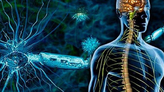 MS (Multiple Skleroz) dünyada 1 milyondan fazla kişide görülüyor