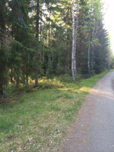 Klicka på bilden och läs om vandring och promenader på Kulturkollo.