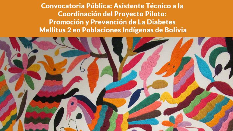 Convocatoria Pública: Asistente Técnico a la Coordinación del Proyecto Piloto: Promoción y Prevención de La Diabetes Mellitus 2 en Poblaciones Indígenas de Bolivia