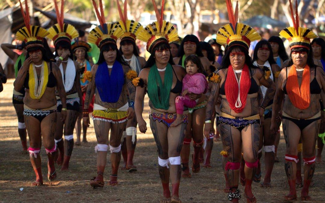Resultado de imagen de indigenas brasil