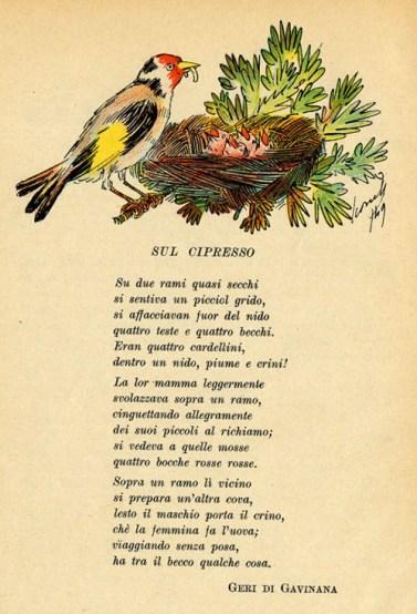 Bilderesultat for cipresso poesie