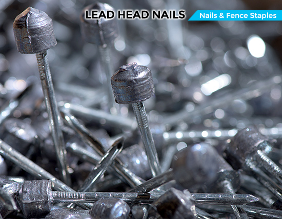 Nails Roofing Gi Sheets Lead Washer