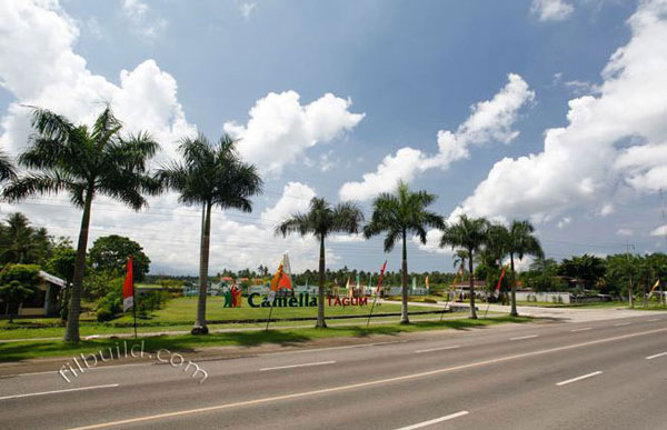 Tagum City Davao Del Norte Real Estate Home Lot For Sale
