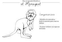 Marxupial