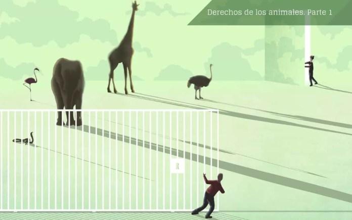 La relación entre los humanos y los animales ha estimulado el pensamiento de los intelectuales desde hace siglos. Imagen: © Ana Yael.