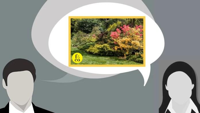Para Epicuro, la filosofía no sirve de nada si no hace feliz al ser humano. Fundó, como también hicieron Platón y Aristóteles, su propia escuela, El Jardín. Este espacio, dentro de su propio hogar, fue el lugar escogido para desarrollar su filosofía, en las reuniones y charlas que mantenía con sus seguidores y amigos. Imagen hecha a partir de dos ilustraciones de Pixabay (foto del jardín, de GS S; ilustración de la mujer, de mohamed Hassan) y una de pxhere (ilustración del hombre, de mohamed hassan).
