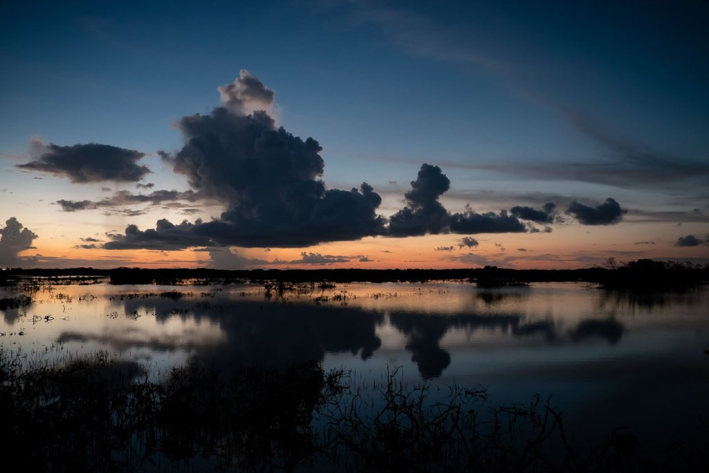 gorgeous sunset over wetlands in florida keys