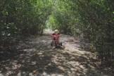 little boy on trike