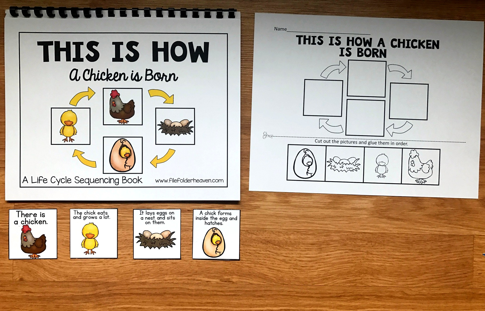 Chicken Life Cycle Sequencing