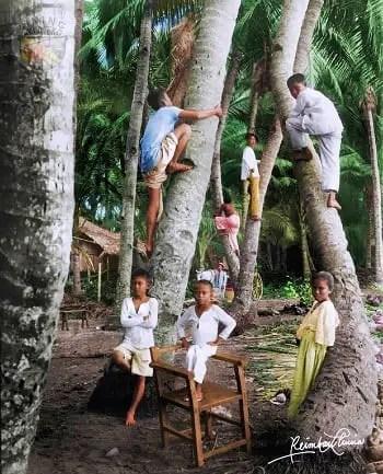 Coconut Kids