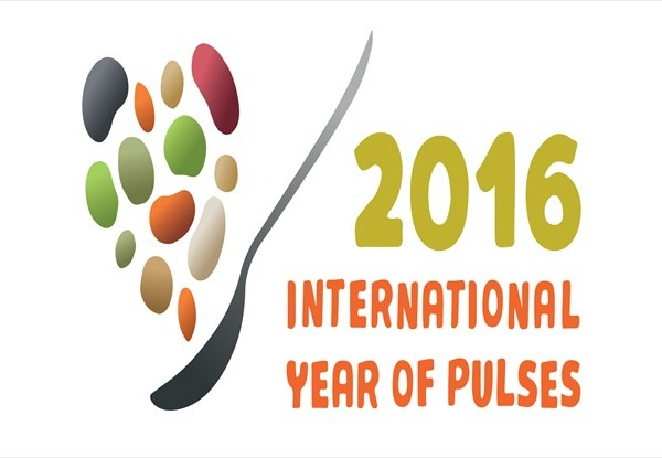 United Nations month theme 2016 – 'International Year of Pulses'