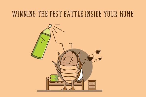 winning the pest battle inside your home