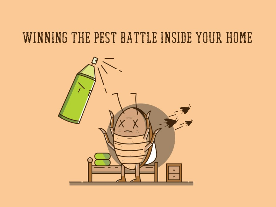 winning the pest battle inside your home