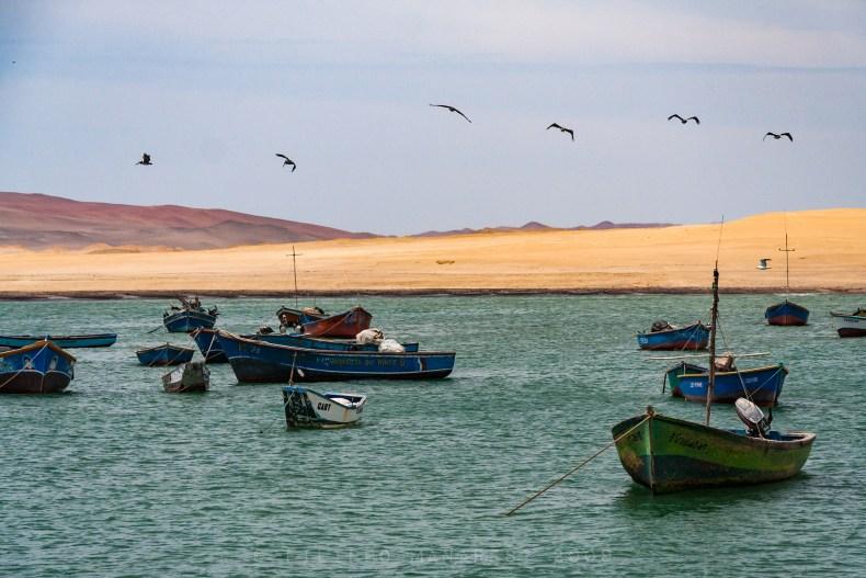 Paracas, boats, pelicans, birds, desert, seaside, coast, Pacific Ocean, Ensenada de Lagunillas, Bahía de Lagunillas
