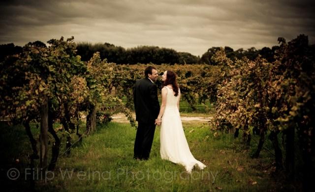 lmoody_vines_Wedding_Photography