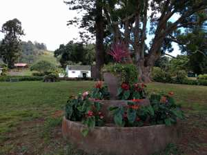 mauiwine grounds1
