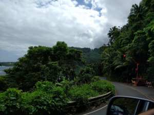 The stop light on Hana Hwy