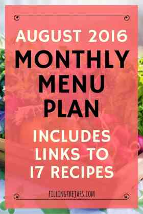 August 2016 Monthly Menu Plan   { HOT Summer Dinners - Links to 17 Recipes } This summer has been HOT. Click through to see my monthly menu plan that mainly uses the grill to keep the house cool. Includes meals based on foil packets and grilled chicken.   www.fillingthejars.com