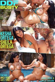 Kesha Ortega, Sheila Ortega latine gemene cu tate mari sex . 5