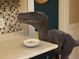 We have a dinosaur