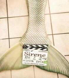 sirene-fiction-2017