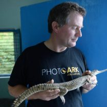 Joel Sartore alligator