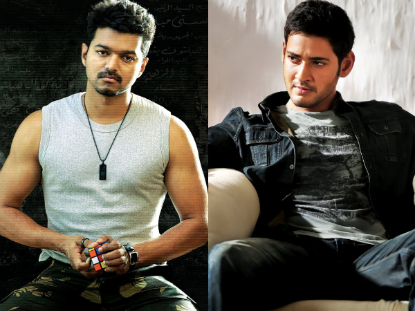 Vijay & Mahesh Babu In The Same Movie - Filmibeat