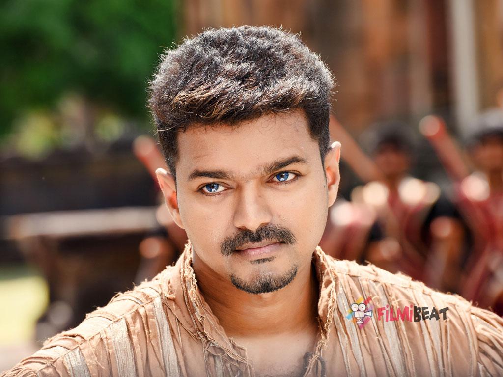 vijay tamil actor hd
