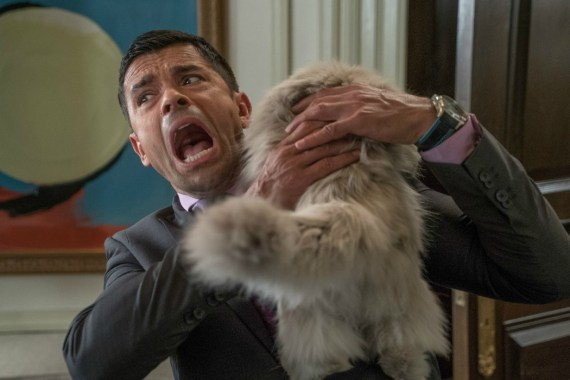 Nine Lives: The One Where Kevin Spacey Plays A Cat