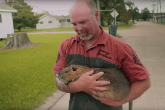 RODENTS OF UNUSUAL SIZE: A Tale Of Rats & Resilience
