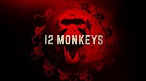 twelve monkeys 12 maymun
