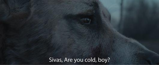 sivas-filmloverss