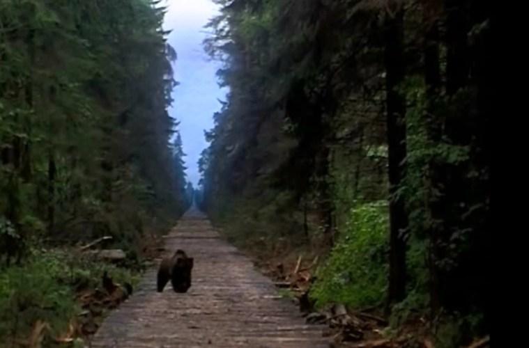 Siberiade - Filmloverss