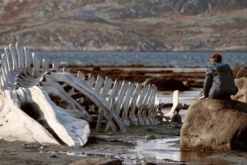 Leviathan - Filmloverss
