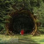 into-the-woods-yeni-4-filmloverss