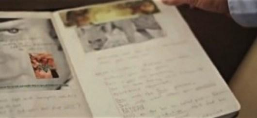 diary1-Filmloverss
