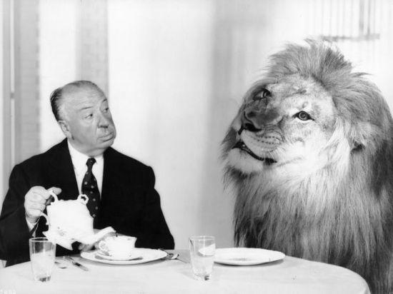 alfred-hitchcock-leo-aslan-mgm-filmloverss