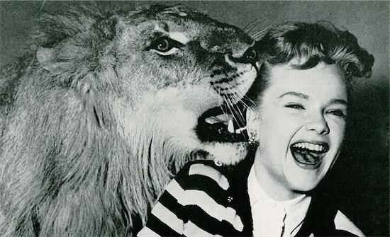 leo-the-lion-1-filmloverss