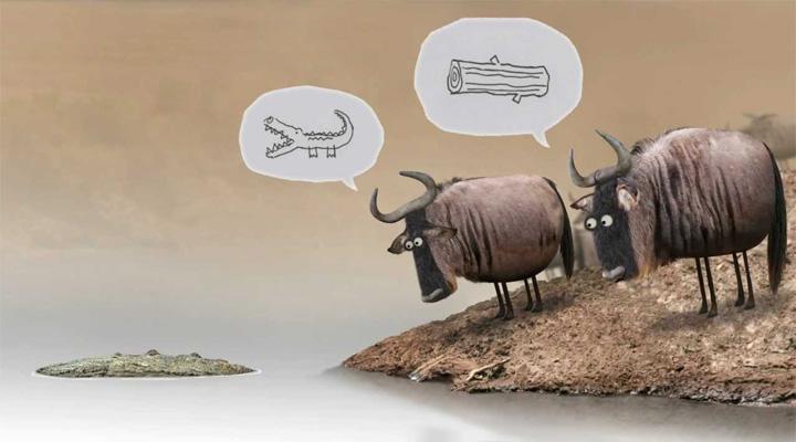 haftanin-kisa-filmi-wildebeest-filmloverss