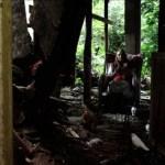 misafir-7-filmloverss