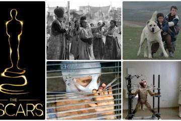yabanci-dilde-en-iyi-film-oscari-aday-adaylari-filmloverss
