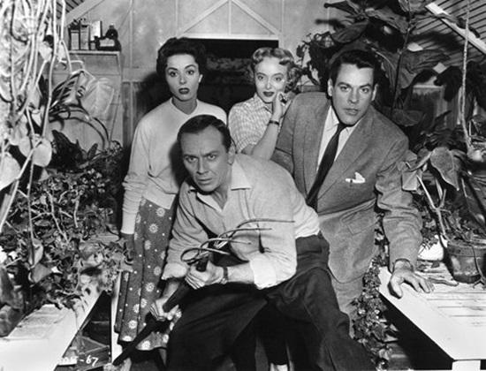 invasion-of-the-body-snatchers-1956-filmloverss