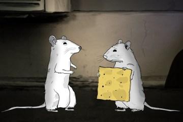 duplass-kardeşler-animasyon-animals-filmloverss