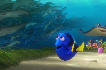 "SO MANY STINGRAYS — In ""Finding Dory,"" memories of her past are sparked for forgetful blue tang Dory when a stingray migration whizzes by her. Featuring the voices of Ellen DeGeneres, Albert Brooks, Ed O'Neill, Kaitlin Olson, Ty Burrell, Eugene Levy and Diane Keaton, ""Finding Dory"" swims into theaters June 17, 2016. ©2016 Disney•Pixar. All Rights Reserved."