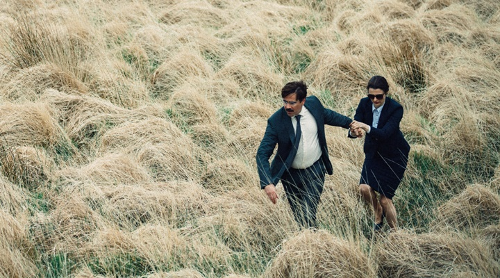 the-lobster-filmloverss