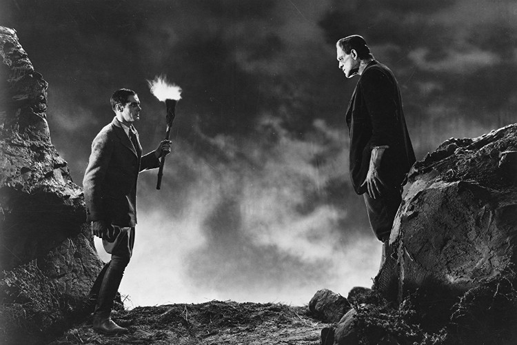 frankenstein-james-whale-1931-filmloverss