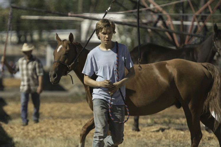 lean-on-pete-charlie-plummer-filmloverss
