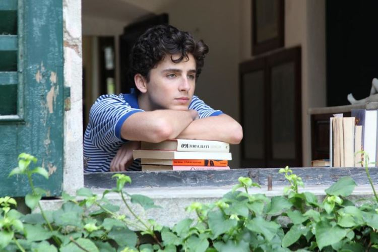 timothee-chalamet-call-me-your-name-filmloverss