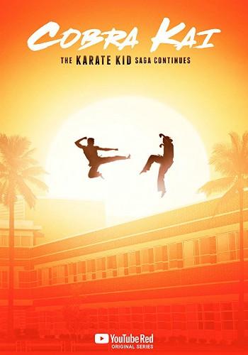 cobra-kai-dizi-poster-filmloverss